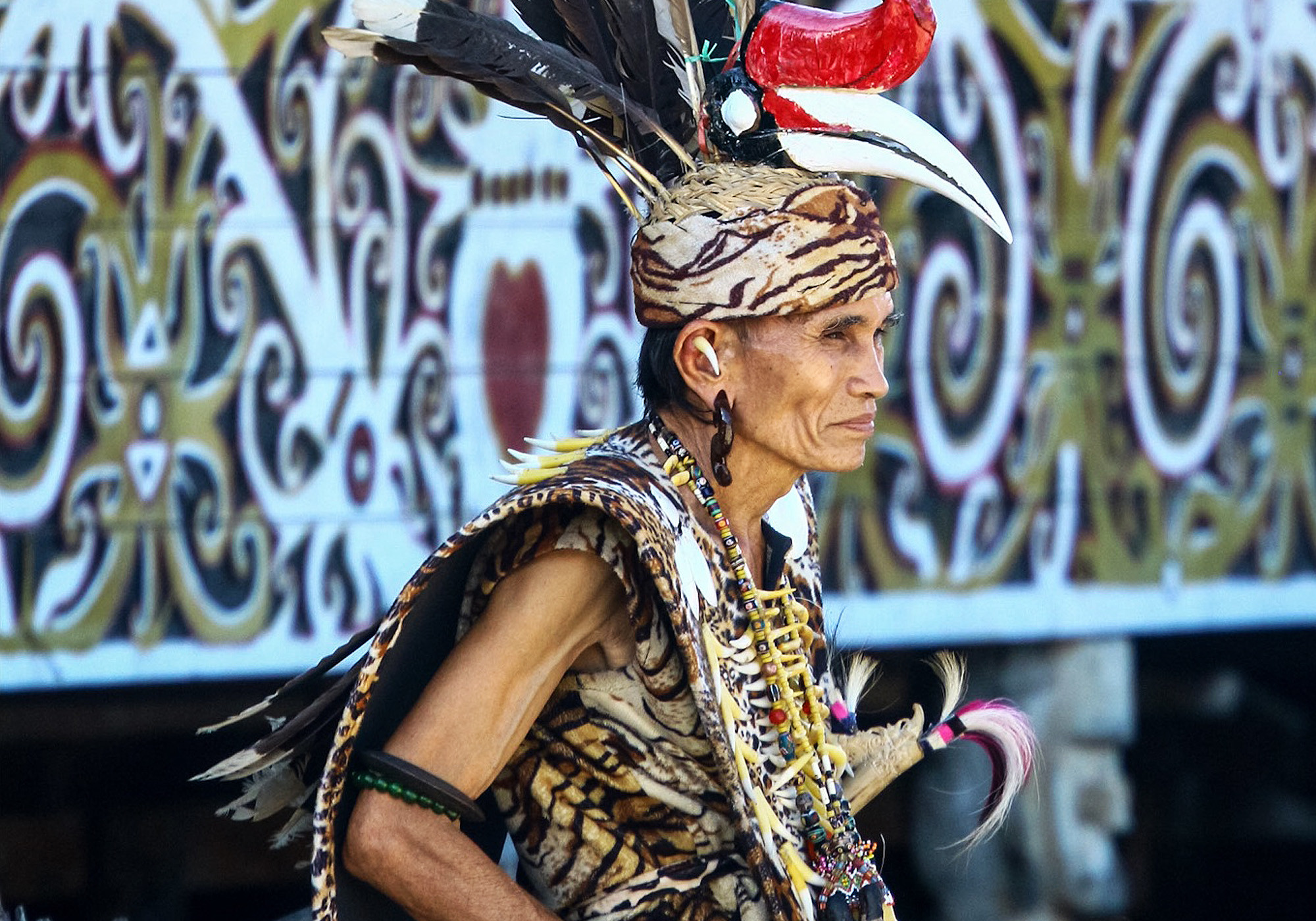 An old Dayak tribesman