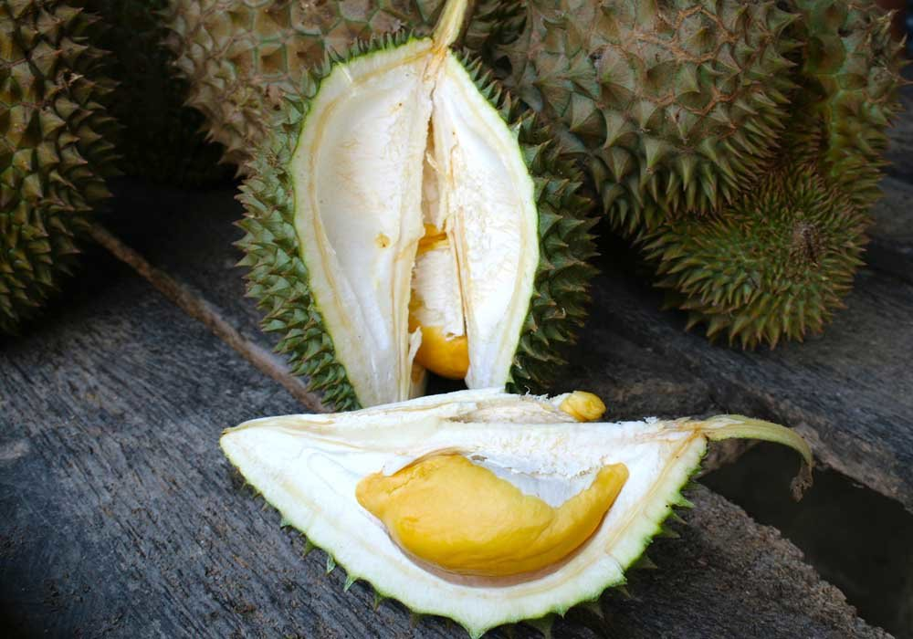 A durian fruit open to show its custardy flesh